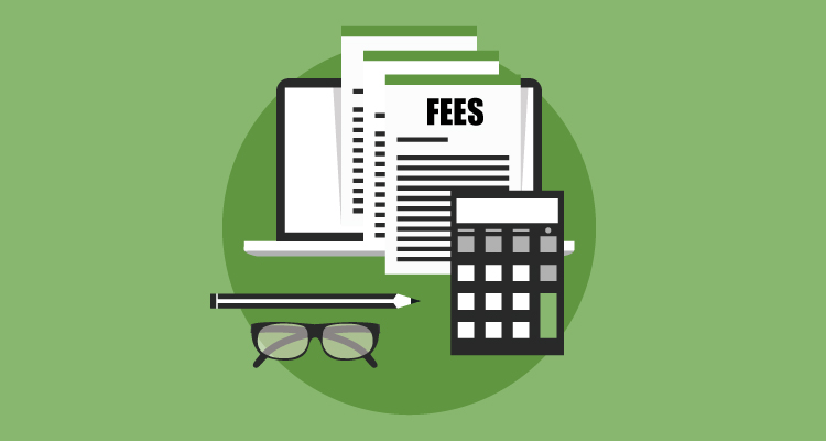 How much are fees and other costs